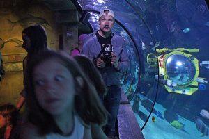 Sea life Legoland Billund