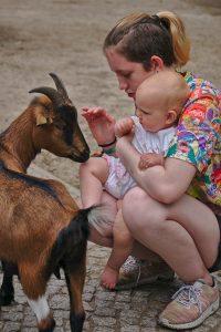 2 Kidner und Ziege Tierpark Berlin