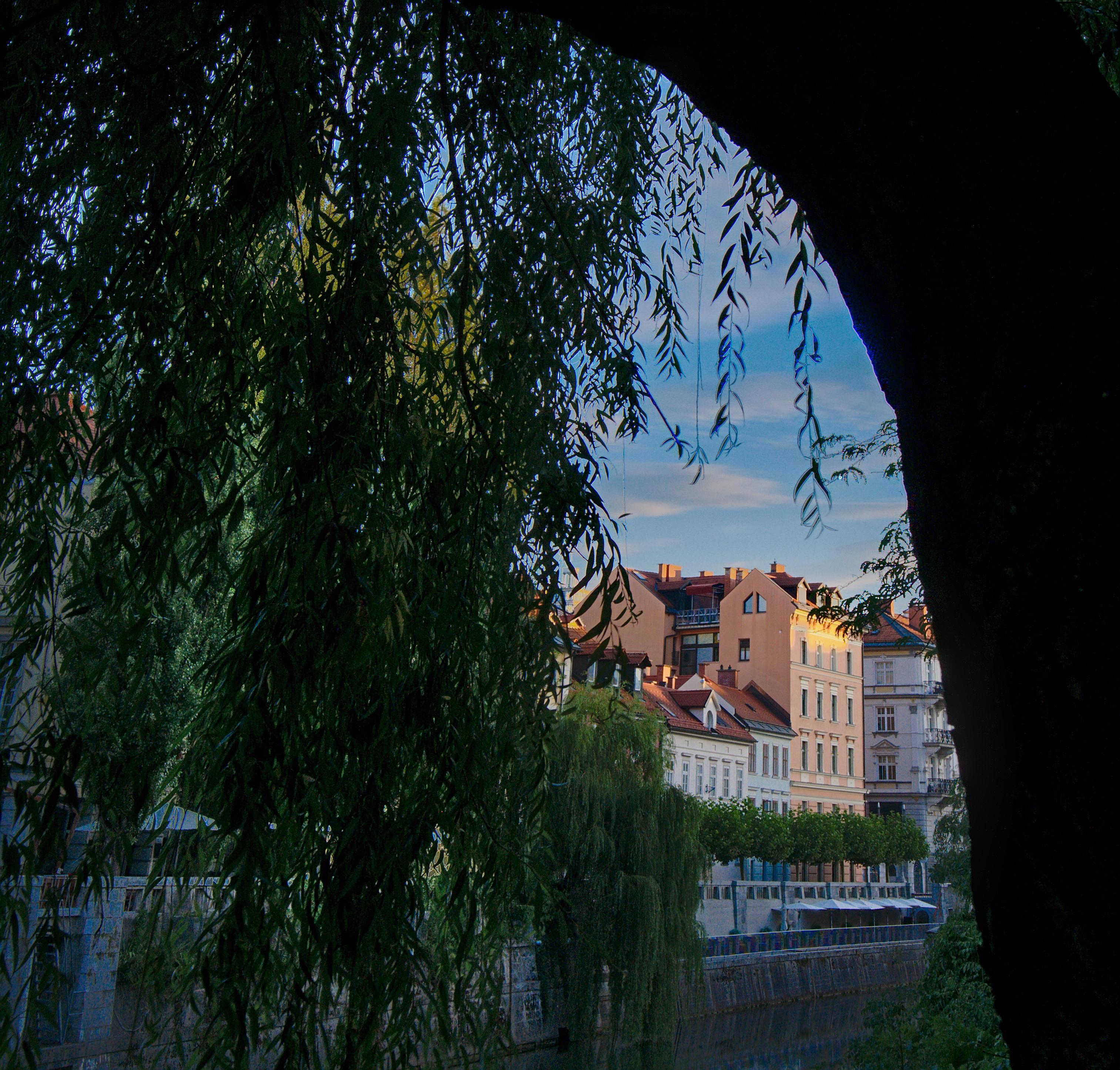 Ljubljana die geliebte Stadt eine kleine Perle in Europa