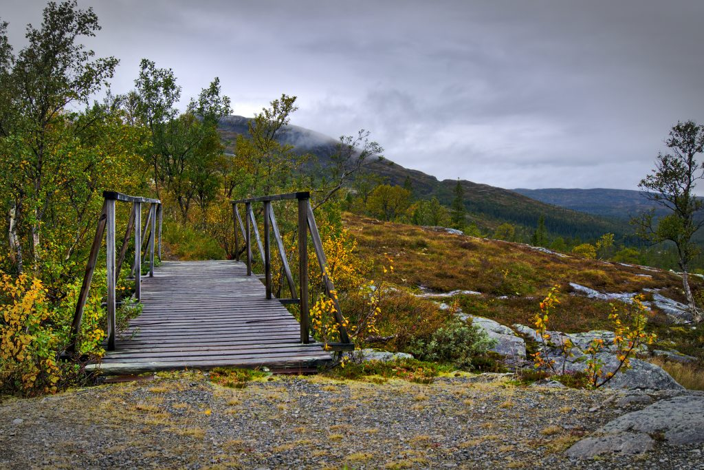 Brücke im Wald an der Grenze Norwegen/Schweden Fotoparade