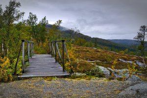 Brücke im Wald an der Grenze Norwegen/Schweden Fotoparade 201
