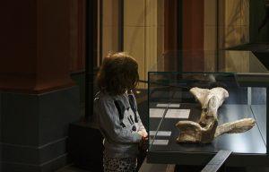 Naturkundemuseum Berlin Staunendes Kind