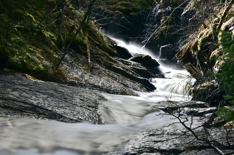 Langzeitbelichtung Bachlauf im wald Norwegen