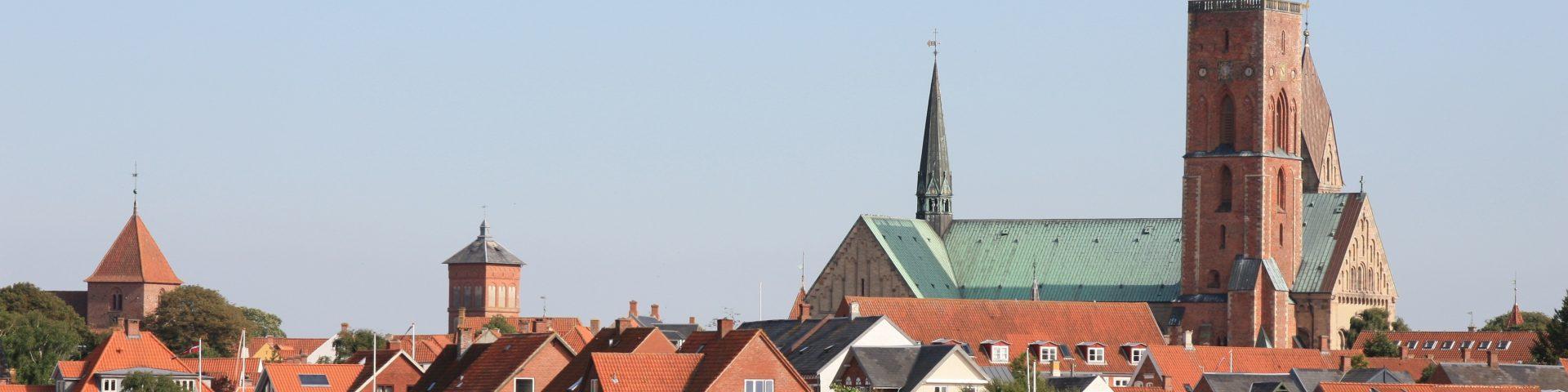 Ribe Stadtansicht meine lieblingsstadt im Norden