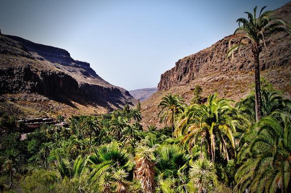 Aussicht Palmitos park Gran Canaria