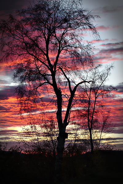 Norwegischer Sonnenuntergang