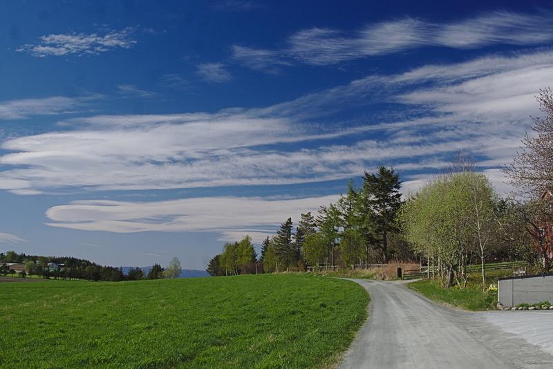 Landschaft mit wolkigen Himmel
