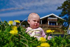 baby in sommerwiese nordische Momente