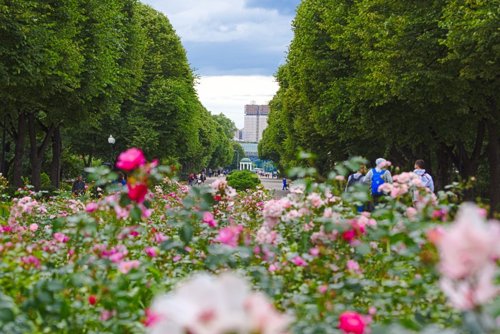 Gorki Park Moskau entdecken