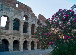 Kolosseum Rom Verbote in Rom