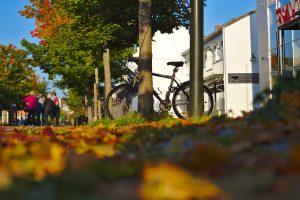 HErbstlaub Fahrrad am Baum in Stjørdal Norwegen