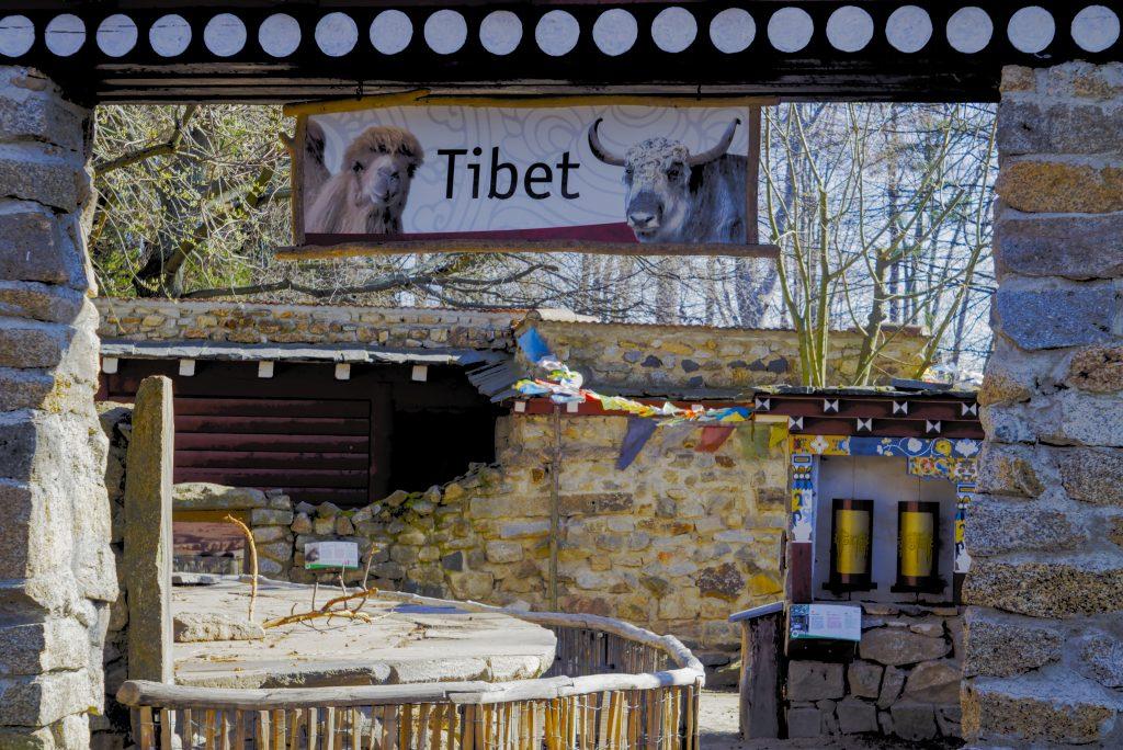 Tibet Dorf Naturschutztierpark Görlitz mit Kindern