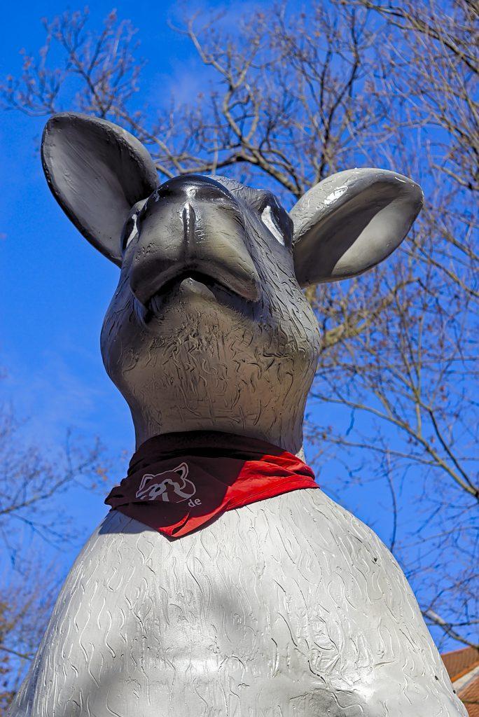 Känguru Klettergerüst Naturschutztierpark Görlitz