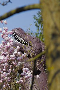Tyrannosaurus und Magnolien