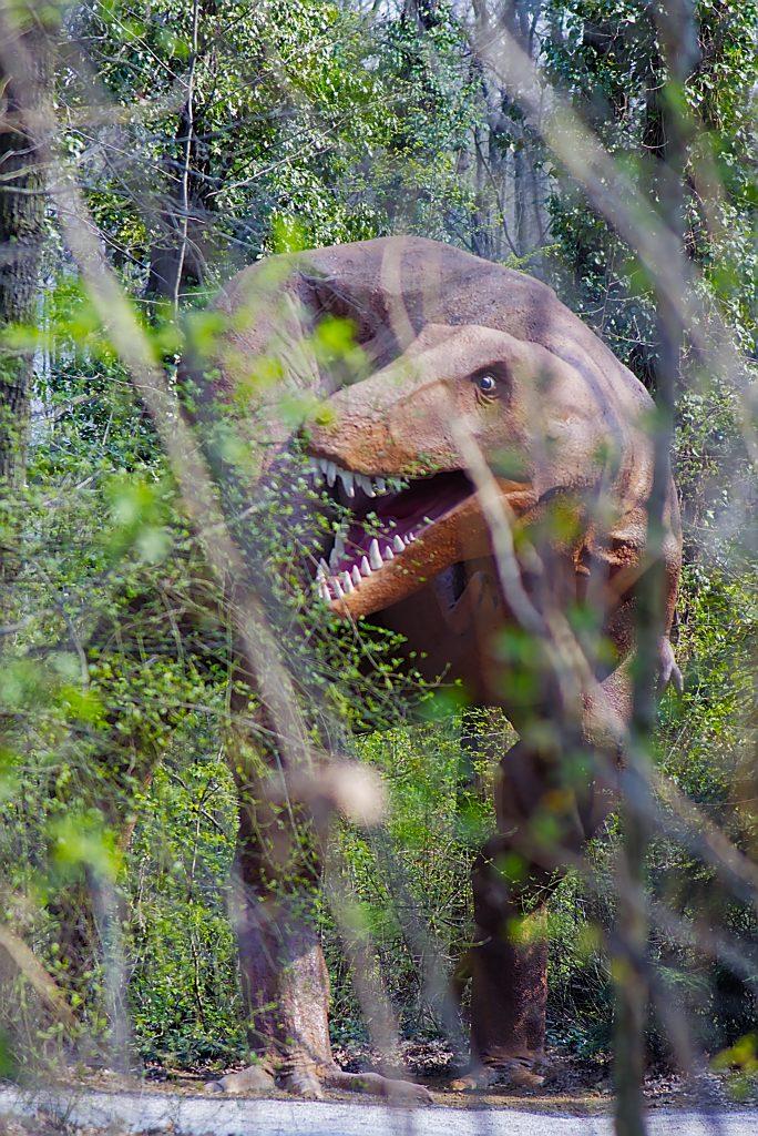 Tyrannosaurus Saurierpark kleinwelka