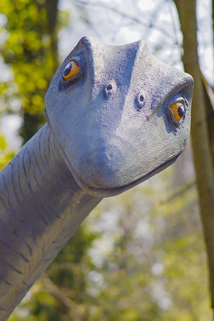 grinsender Kopf eines Dinos