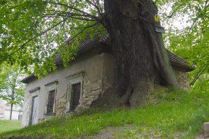 Moller Linde Nikolaifriedhof Görlitz