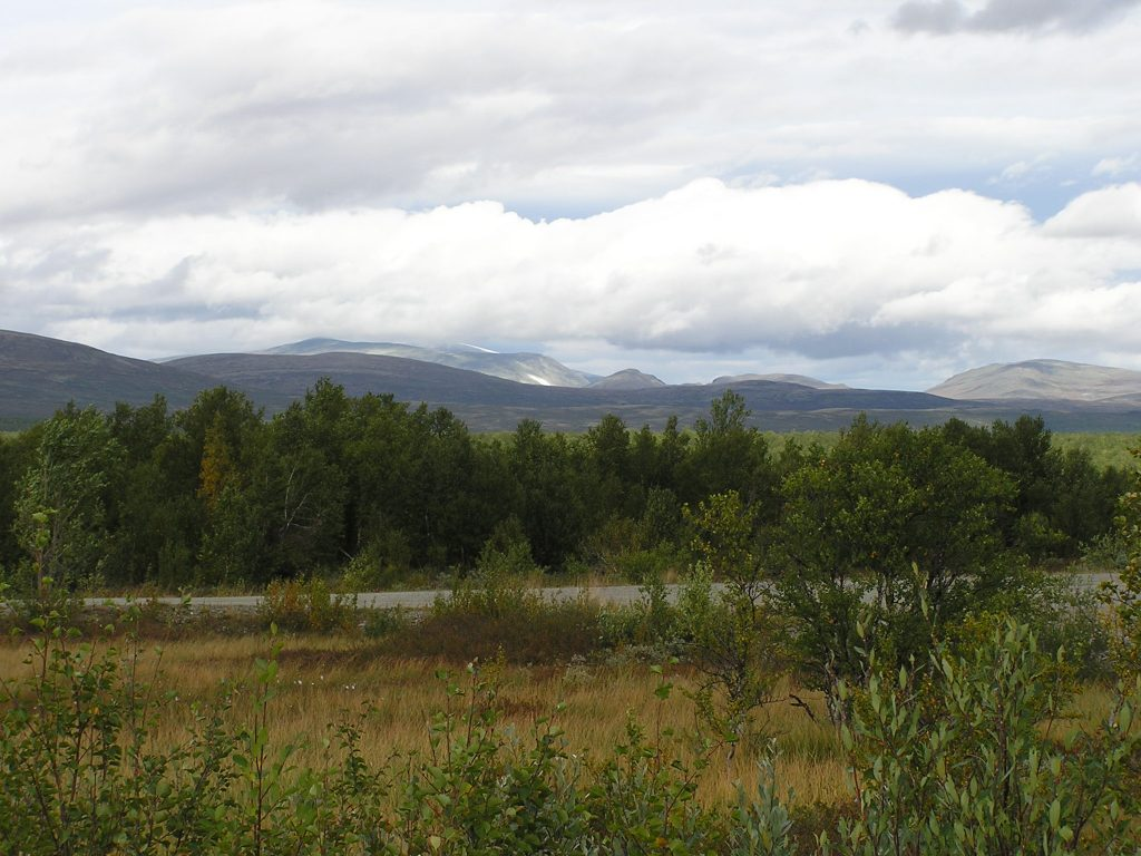 Dovre Gebirge Trøndelag
