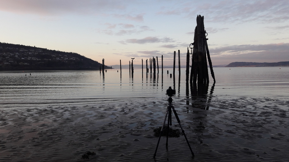 Kamera mit Stativ vor norwegischer Fjordlandschaft