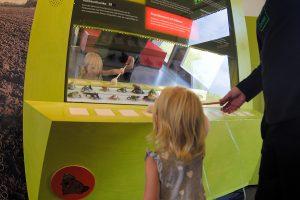 Haus der Flüsse Freizeitspieone spass beim Froschkonzert