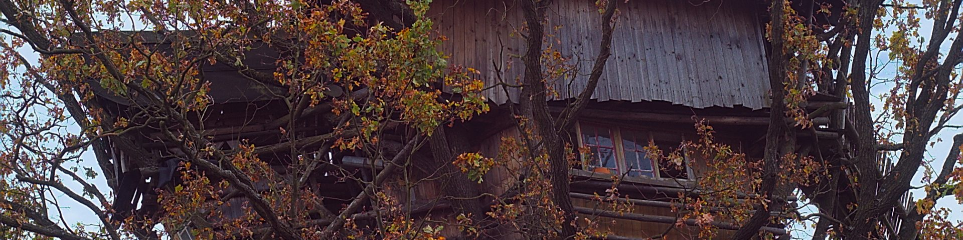 Baumhaus Baumhaushotel