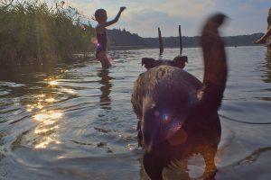 Stiernsee Uckermark , Kinder und Hund baden