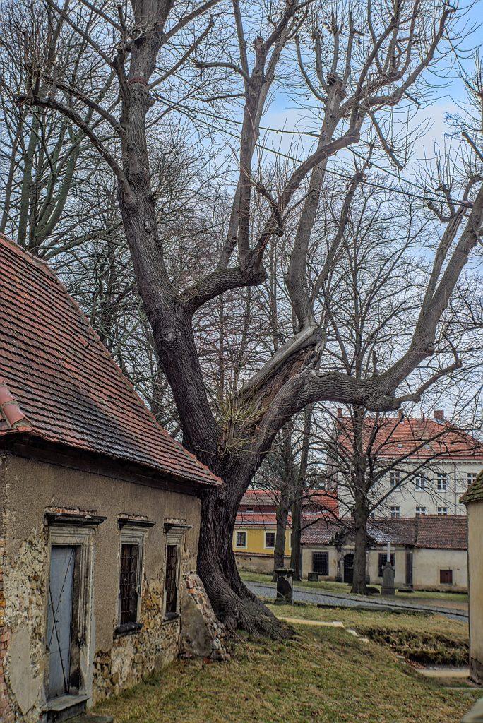 Fotoprojekt Moller-Linde