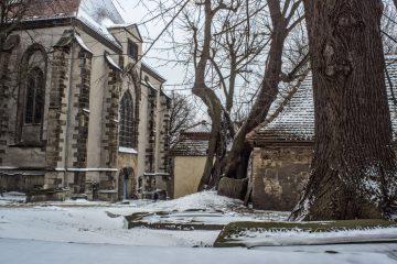 Moller Linde auf dem Nikolai Friedhof